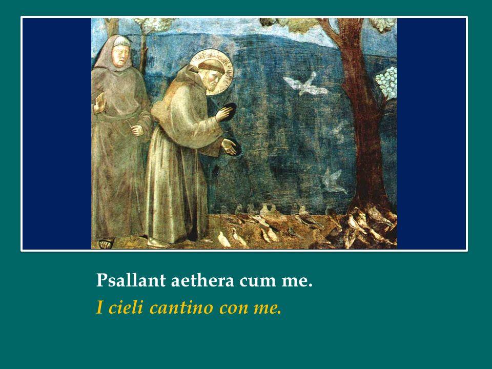 Psallant aethera cum me. I cieli cantino con me.