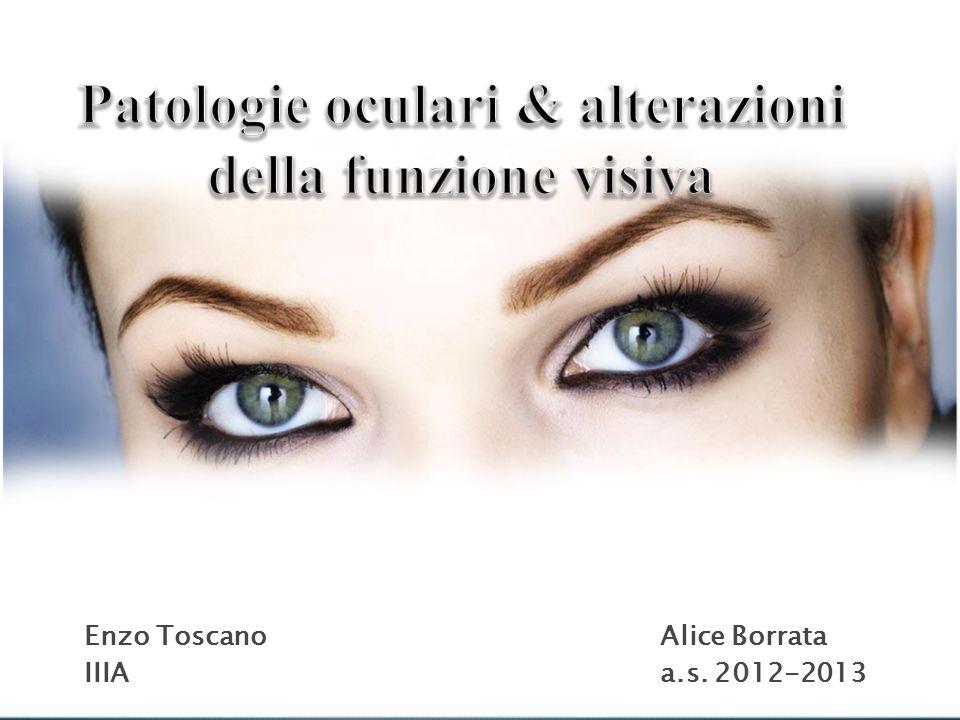 Enzo ToscanoAlice Borrata IIIA a.s. 2012-2013