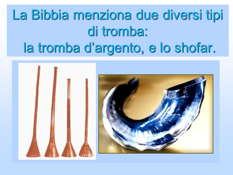 La Bibbia menziona due diversi tipi di tromba: la tromba dargento, e lo shofar.