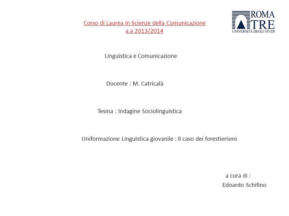 Indagine Sociolinguistica : Quanto e in quali campi di interesse/studio i forestierismi incidono sulluniformazione linguistica giovanile.