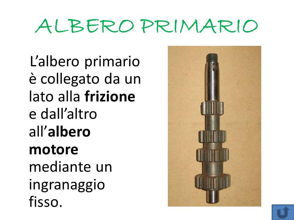 ALBERO PRIMARIO Lalbero primario è collegato da un lato alla frizione e dallaltro allalbero motore mediante un ingranaggio fisso.