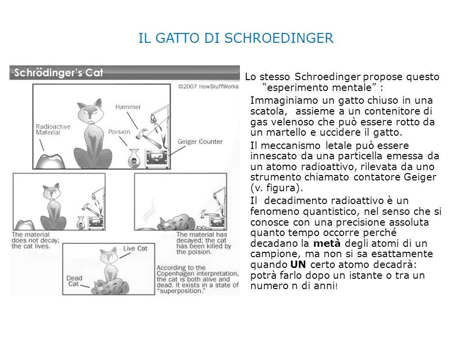IL GATTO DI SCHROEDINGER Lo stesso Schroedinger propose questo esperimento mentale : Immaginiamo un gatto chiuso in una scatola, assieme a un contenit