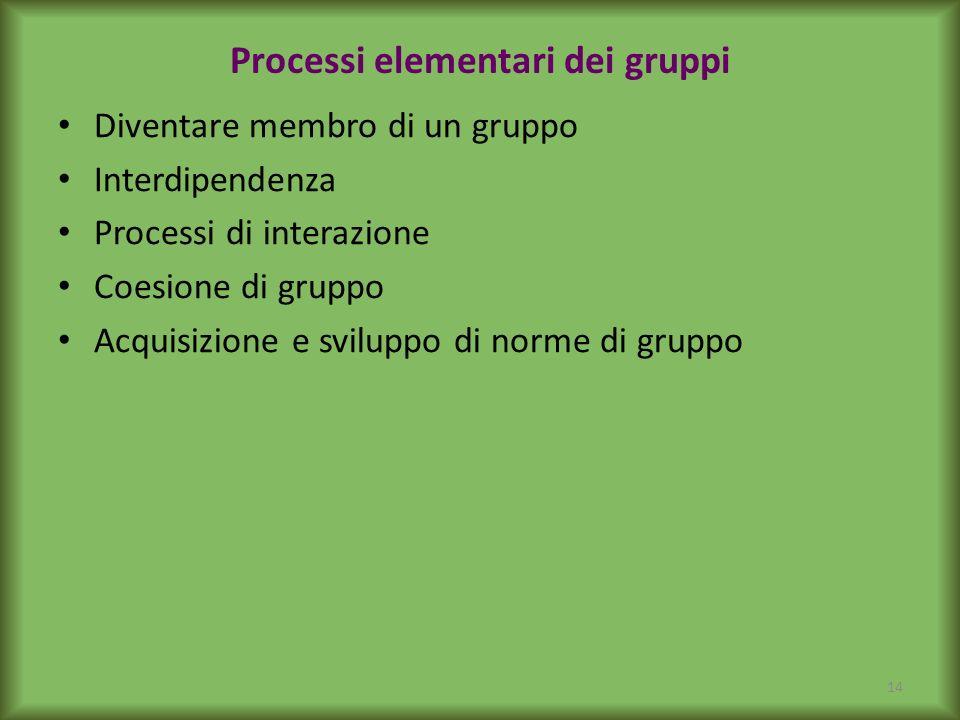 Processi elementari dei gruppi Diventare membro di un gruppo Interdipendenza Processi di interazione Coesione di gruppo Acquisizione e sviluppo di nor