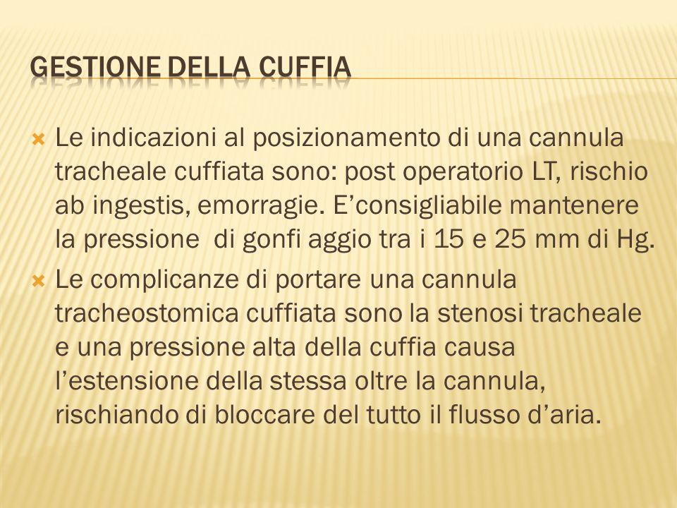 Le indicazioni al posizionamento di una cannula tracheale cuffiata sono: post operatorio LT, rischio ab ingestis, emorragie.