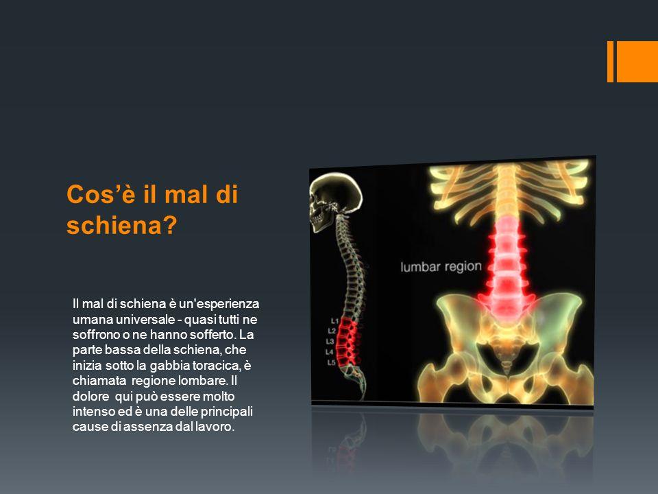 I sintomi del mal di schiena I sintomi variano da un dolore sordo a una sensazione lancinante.
