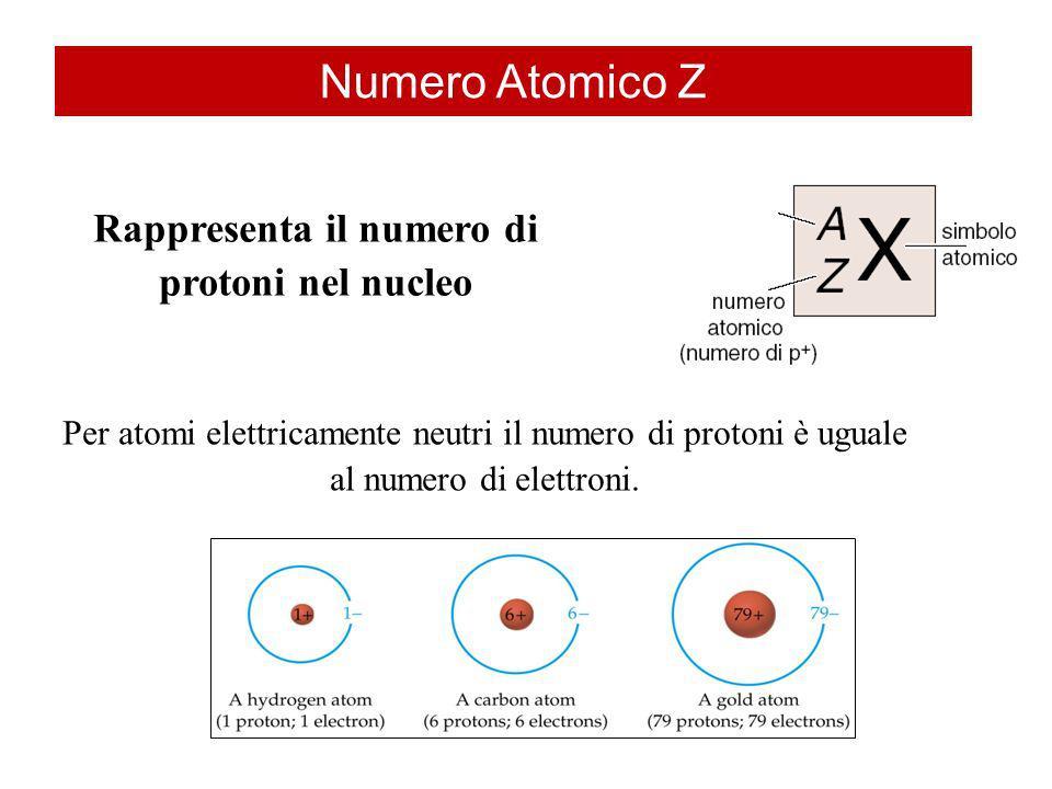 Numero Atomico Z Per atomi elettricamente neutri il numero di protoni è uguale al numero di elettroni. Rappresenta il numero di protoni nel nucleo