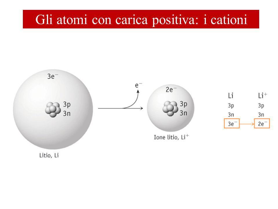 Gli atomi con carica positiva: i cationi
