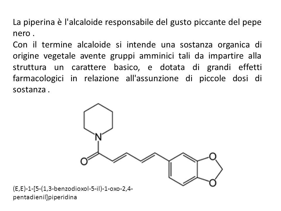 La piperina è l'alcaloide responsabile del gusto piccante del pepe nero. Con il termine alcaloide si intende una sostanza organica di origine vegetale