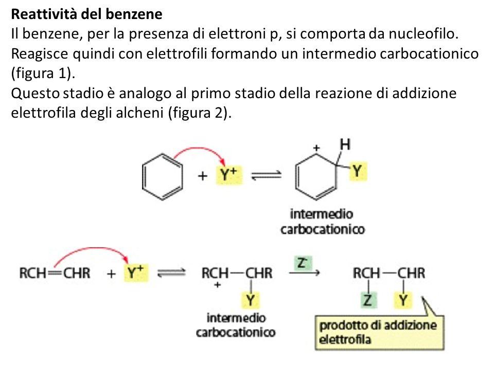Reattività del benzene Il benzene, per la presenza di elettroni p, si comporta da nucleofilo. Reagisce quindi con elettrofili formando un intermedio c