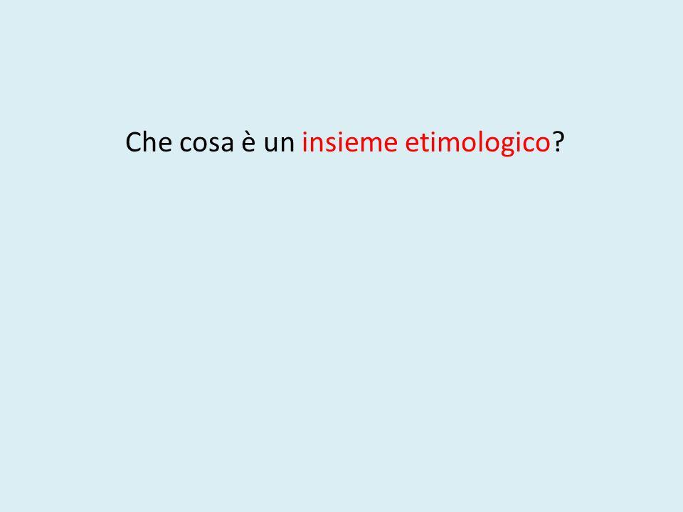 Che cosa è un insieme etimologico?