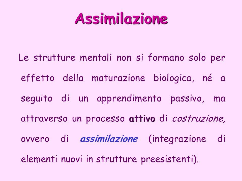 Assimilazione attivo Le strutture mentali non si formano solo per effetto della maturazione biologica, né a seguito di un apprendimento passivo, ma at
