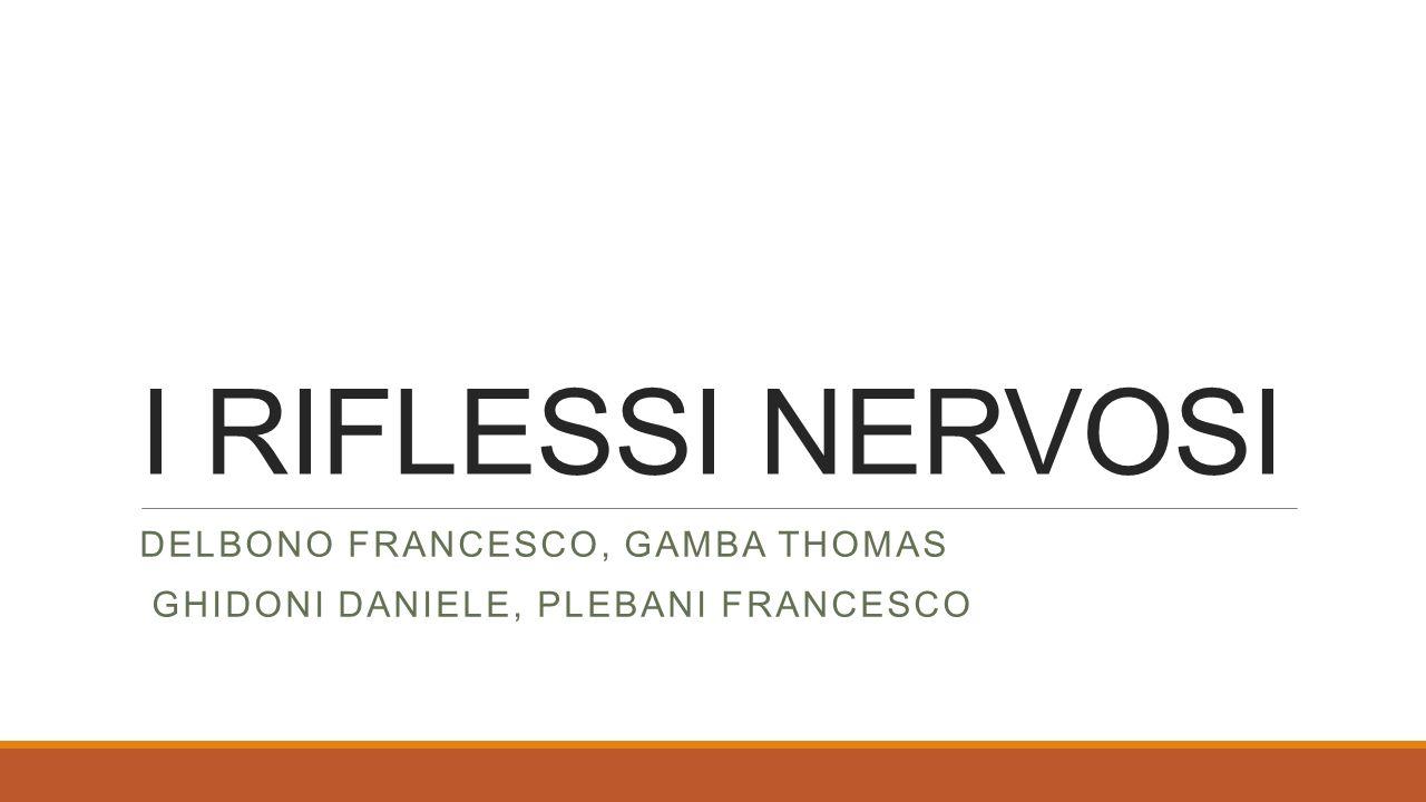 I RIFLESSI NERVOSI DELBONO FRANCESCO, GAMBA THOMAS GHIDONI DANIELE, PLEBANI FRANCESCO