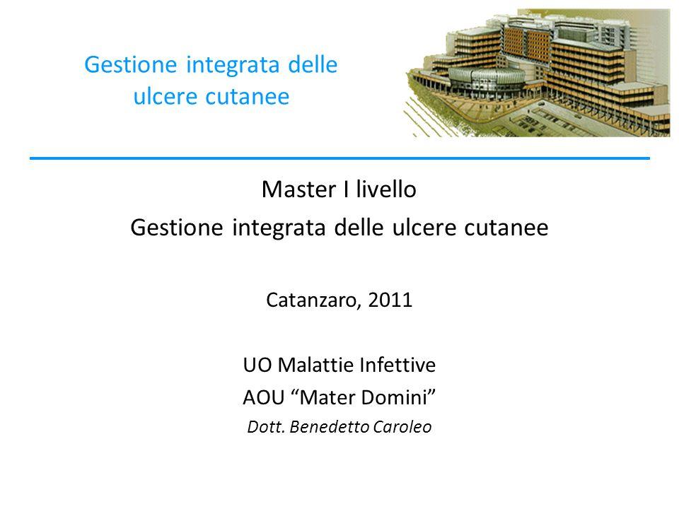 Gestione integrata delle ulcere cutanee Master I livello Gestione integrata delle ulcere cutanee Catanzaro, 2011 UO Malattie Infettive AOU Mater Domini Dott.