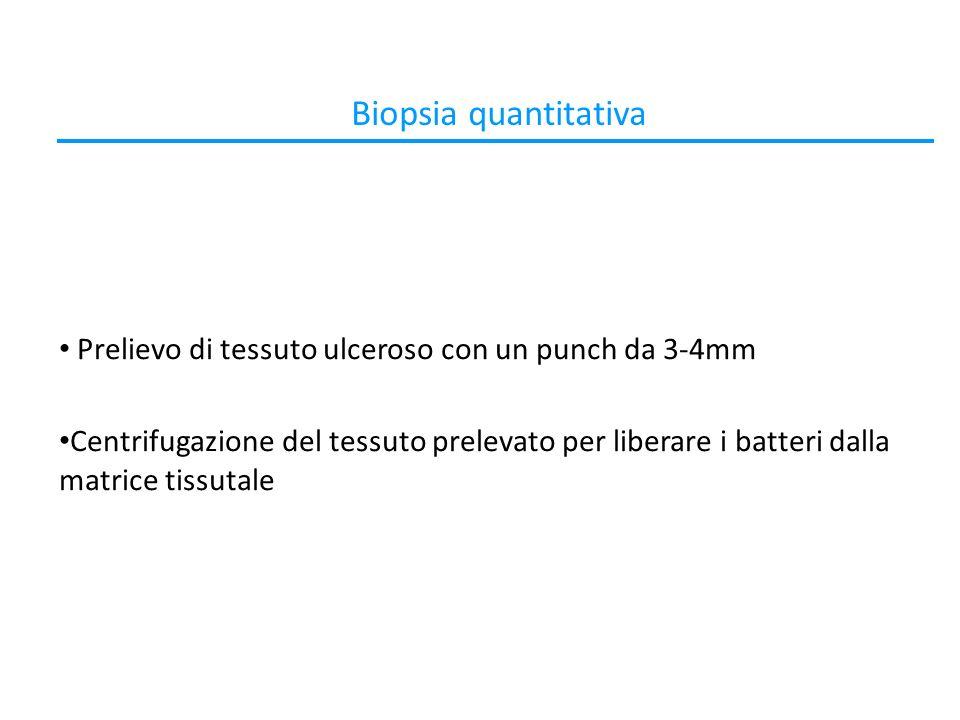 Biopsia quantitativa Prelievo di tessuto ulceroso con un punch da 3-4mm Centrifugazione del tessuto prelevato per liberare i batteri dalla matrice tissutale