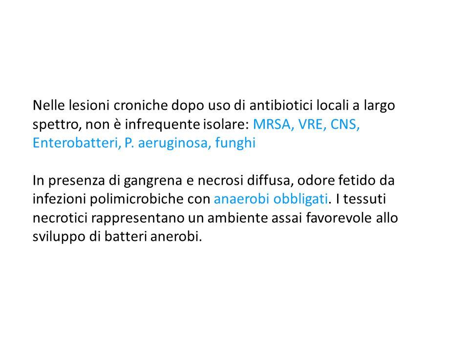 Nelle lesioni croniche dopo uso di antibiotici locali a largo spettro, non è infrequente isolare: MRSA, VRE, CNS, Enterobatteri, P.