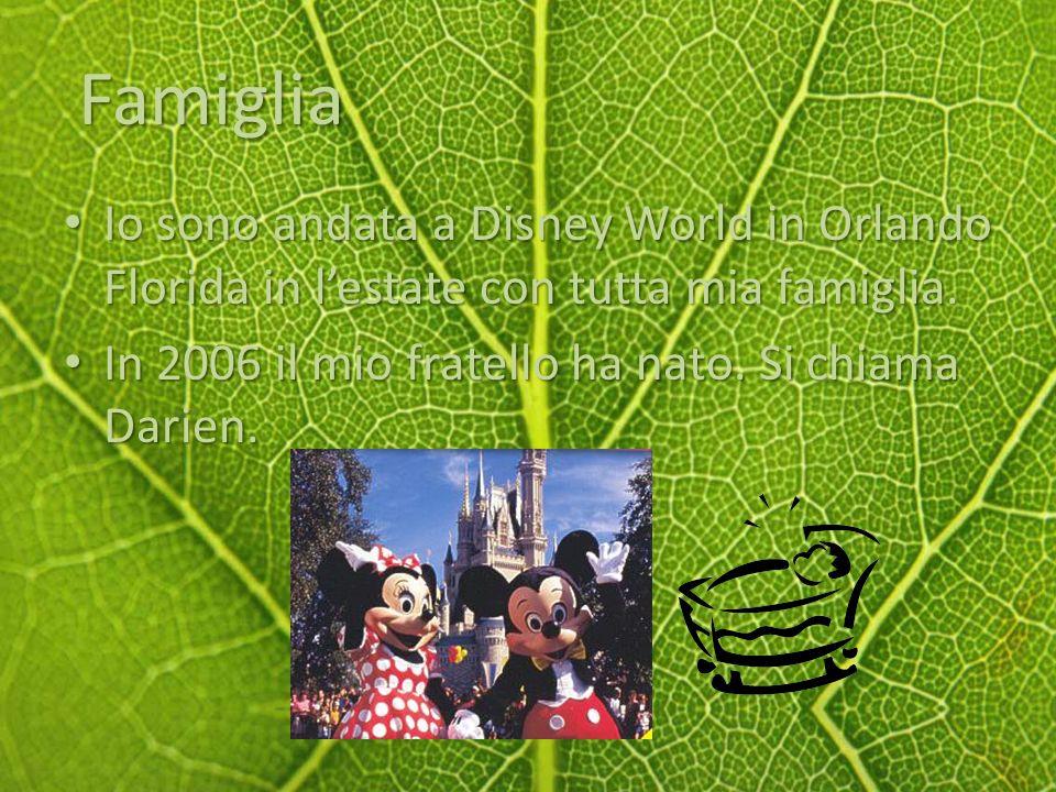 Famiglia Io sono andata a Disney World in Orlando Florida in lestate con tutta mia famiglia.