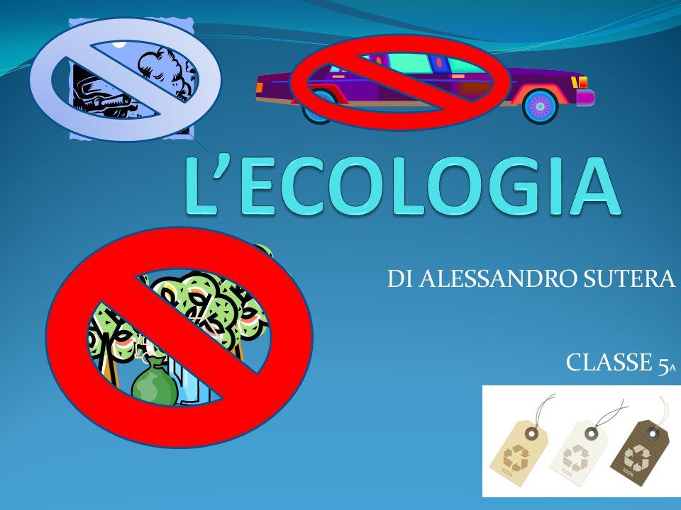 DI ALESSANDRO SUTERA CLASSE 5 A