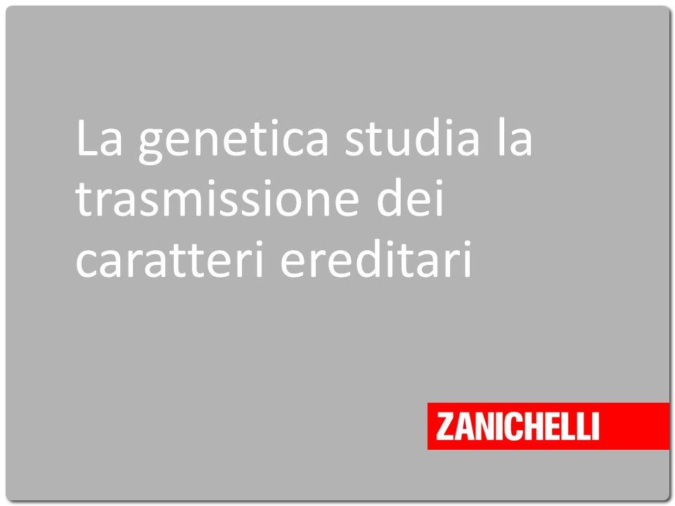 Cavazzuti La vita intorno a noi © Zanichelli editore 2010 La genetica studia la trasmissione dei caratteri ereditari