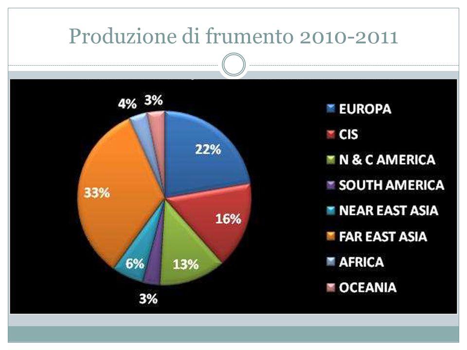 Produzione di frumento 2010-2011