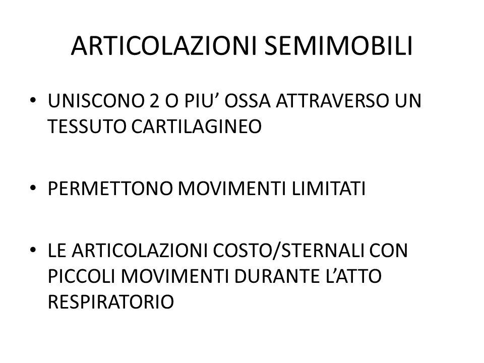 ARTICOLAZIONI MOBILI SONO QUELLE PIU COMUNI CONSENTONO AMPI MOVIMENTI SONO STRUTTURATE IN MODO CHE ALLA PARTE CONCAVA DI UN OSSO CORRISPONDE LA PARTE CONVESSA DELL ALTRO ARTICOLAZIONE SCAPOLO-OMERALE (ENARTROSI)E COXO FEMORALE (FEMORE E BACINO)