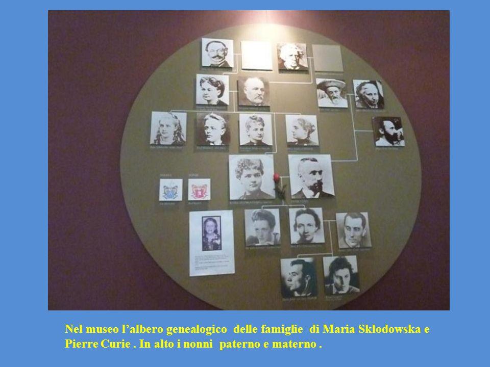 Nel museo lalbero genealogico delle famiglie di Maria Sklodowska e Pierre Curie. In alto i nonni paterno e materno.