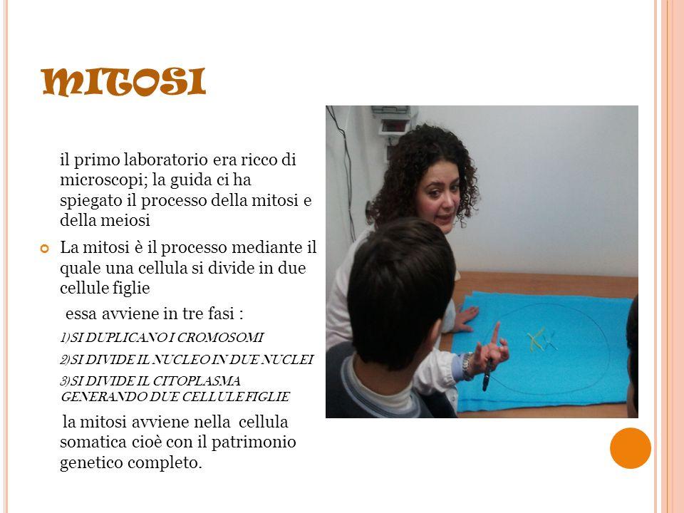 V ISITA AL CNR Il 22 febbraio la 2° A e la 2° B si sono recate in visita guidata al CNR di Napoli (Centro Nazionale di Ricerca).