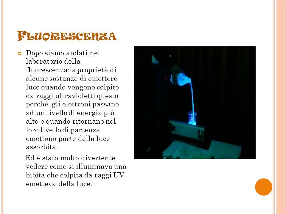F LUORESCENZA Dopo siamo andati nel laboratorio della fluorescenza:la proprietà di alcune sostanze di emettere luce quando vengono colpite da raggi ultravioletti questo perché gli elettroni passano ad un livello di energia più alto e quando ritornano nel loro livello di partenza emettono parte della luce assorbita.