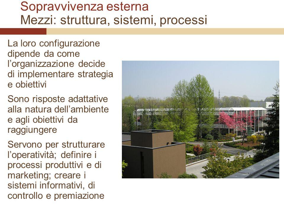 Sopravvivenza esterna Mezzi: struttura, sistemi, processi La loro configurazione dipende da come lorganizzazione decide di implementare strategia e ob