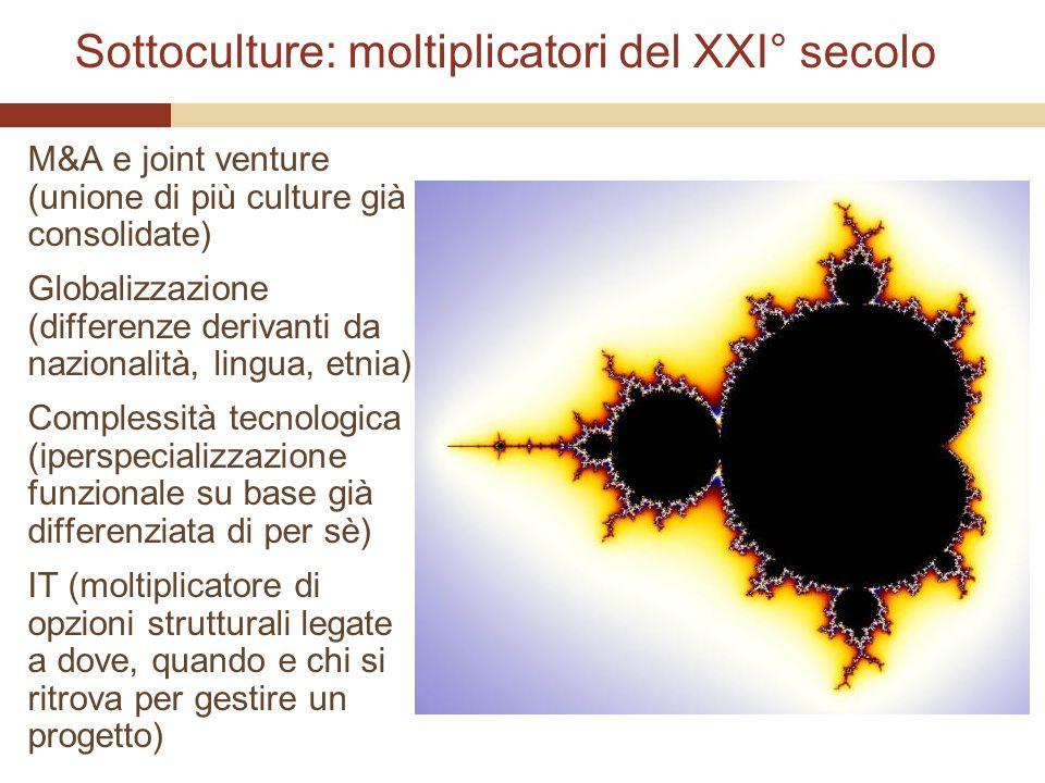 Sottoculture: moltiplicatori del XXI° secolo M&A e joint venture (unione di più culture già consolidate) Globalizzazione (differenze derivanti da nazi