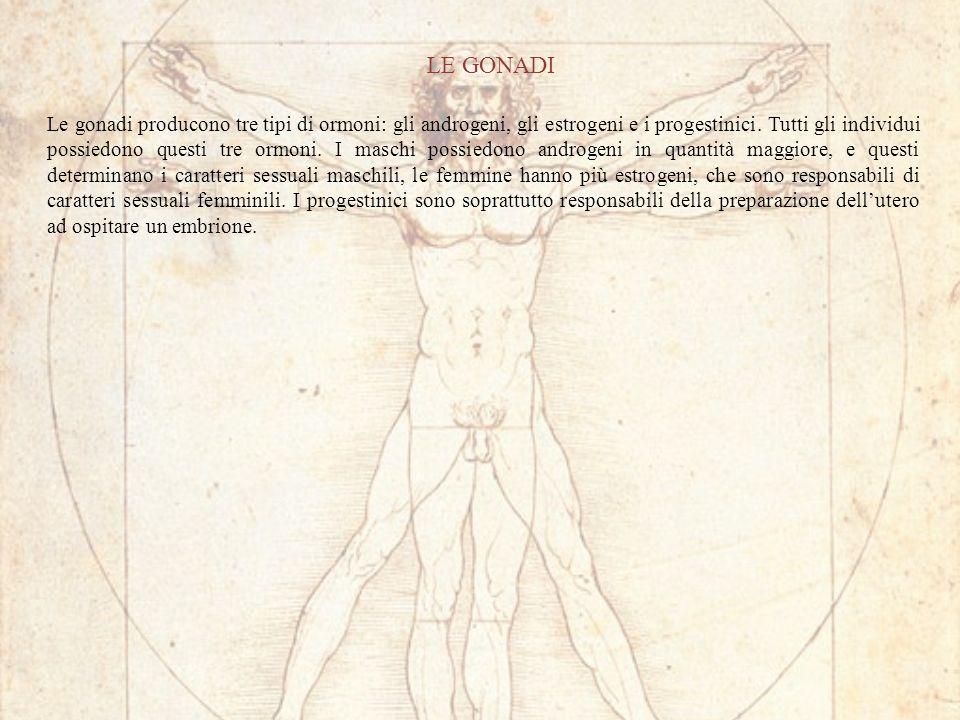 LE GONADI Le gonadi producono tre tipi di ormoni: gli androgeni, gli estrogeni e i progestinici. Tutti gli individui possiedono questi tre ormoni. I m