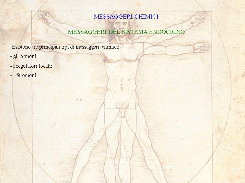 MESSAGGERI CHIMICI MESSAGGERI DEL SISTEMA ENDOCRINO Esistono tre principali tipi di messaggeri chimici: - gli ormoni; - i regolatori locali; - i feromoni.