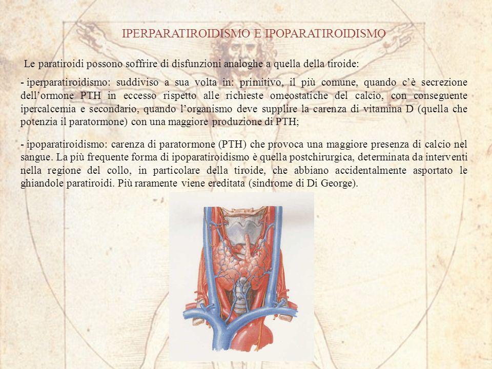 IPERPARATIROIDISMO E IPOPARATIROIDISMO Le paratiroidi possono soffrire di disfunzioni analoghe a quella della tiroide: - iperparatiroidismo: suddiviso a sua volta in: primitivo, il più comune, quando cè secrezione dellormone PTH in eccesso rispetto alle richieste omeostatiche del calcio, con conseguente ipercalcemia e secondario, quando lorganismo deve supplire la carenza di vitamina D (quella che potenzia il paratormone) con una maggiore produzione di PTH; - ipoparatiroidismo: carenza di paratormone (PTH) che provoca una maggiore presenza di calcio nel sangue.