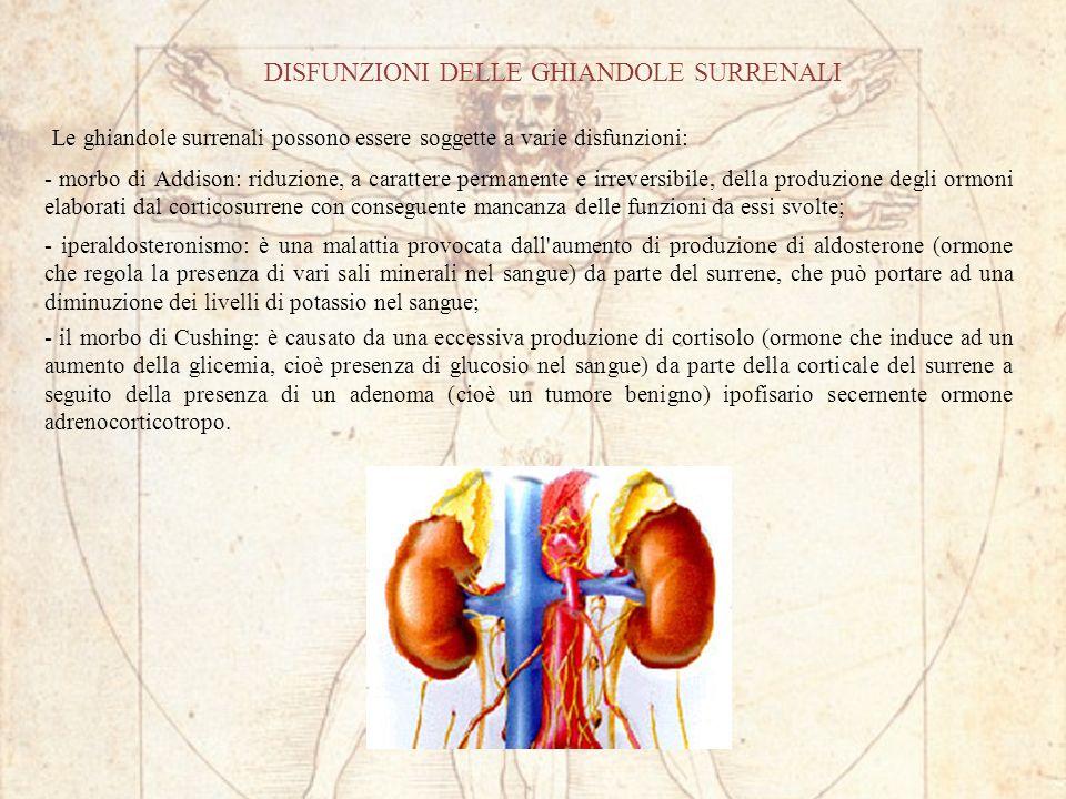 DISFUNZIONI DELLE GHIANDOLE SURRENALI - morbo di Addison: riduzione, a carattere permanente e irreversibile, della produzione degli ormoni elaborati dal corticosurrene con conseguente mancanza delle funzioni da essi svolte; Le ghiandole surrenali possono essere soggette a varie disfunzioni: - iperaldosteronismo: è una malattia provocata dall aumento di produzione di aldosterone (ormone che regola la presenza di vari sali minerali nel sangue) da parte del surrene, che può portare ad una diminuzione dei livelli di potassio nel sangue; - il morbo di Cushing: è causato da una eccessiva produzione di cortisolo (ormone che induce ad un aumento della glicemia, cioè presenza di glucosio nel sangue) da parte della corticale del surrene a seguito della presenza di un adenoma (cioè un tumore benigno) ipofisario secernente ormone adrenocorticotropo.