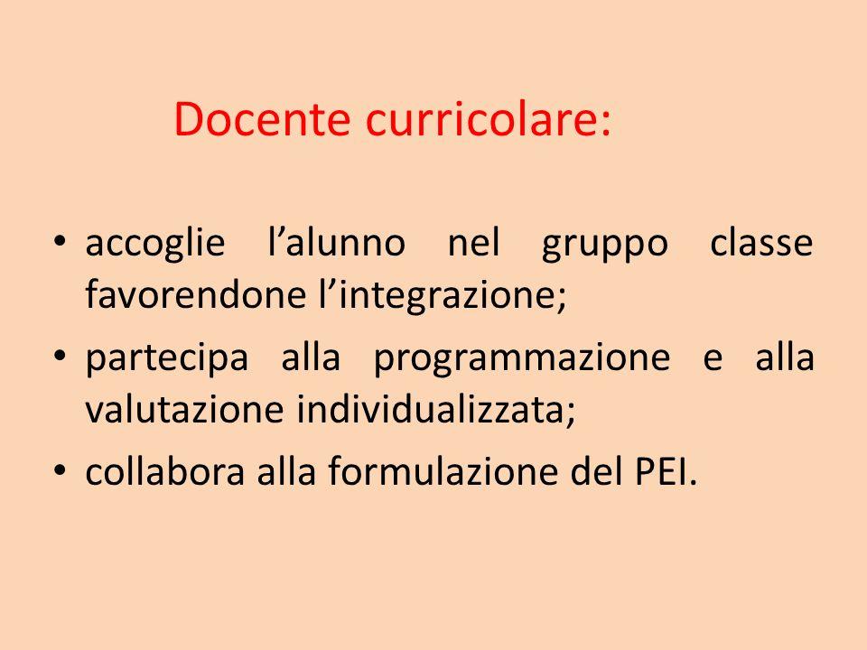 Docente curricolare: accoglie lalunno nel gruppo classe favorendone lintegrazione; partecipa alla programmazione e alla valutazione individualizzata;