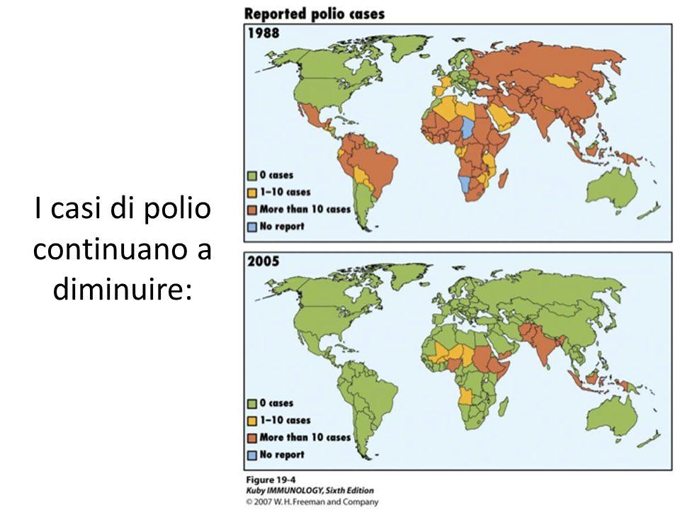 I casi di polio continuano a diminuire: