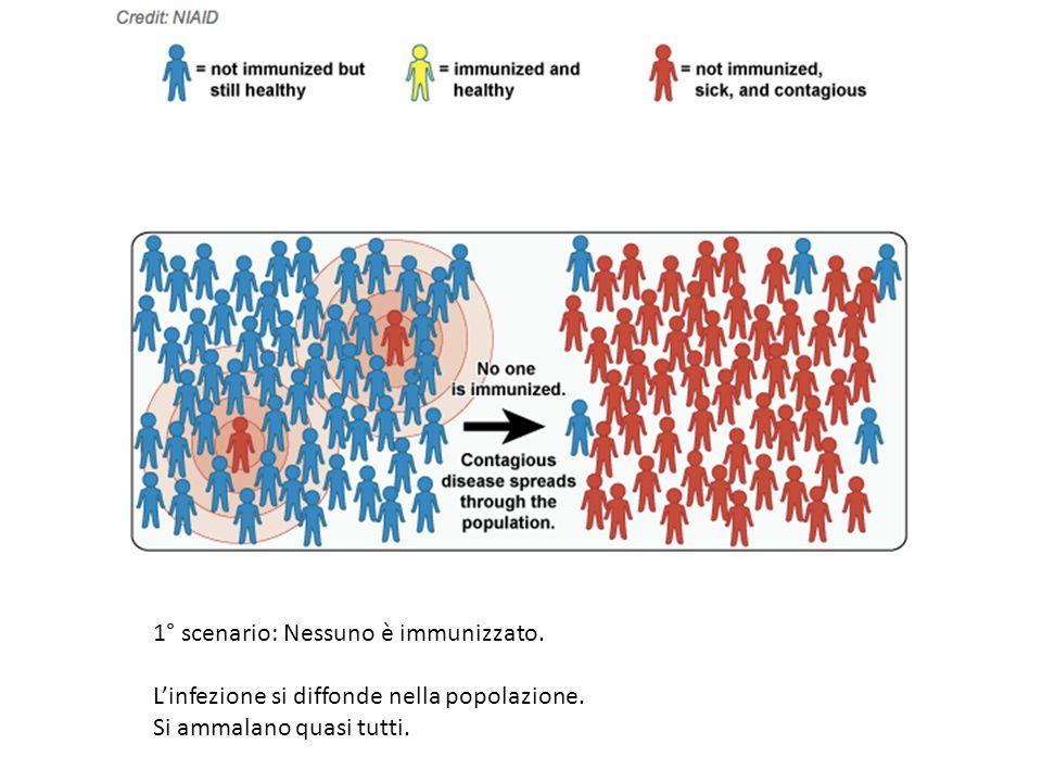 2° scenario: Qualcuno è immunizzato.Linfezione si diffonde nella popolazione.