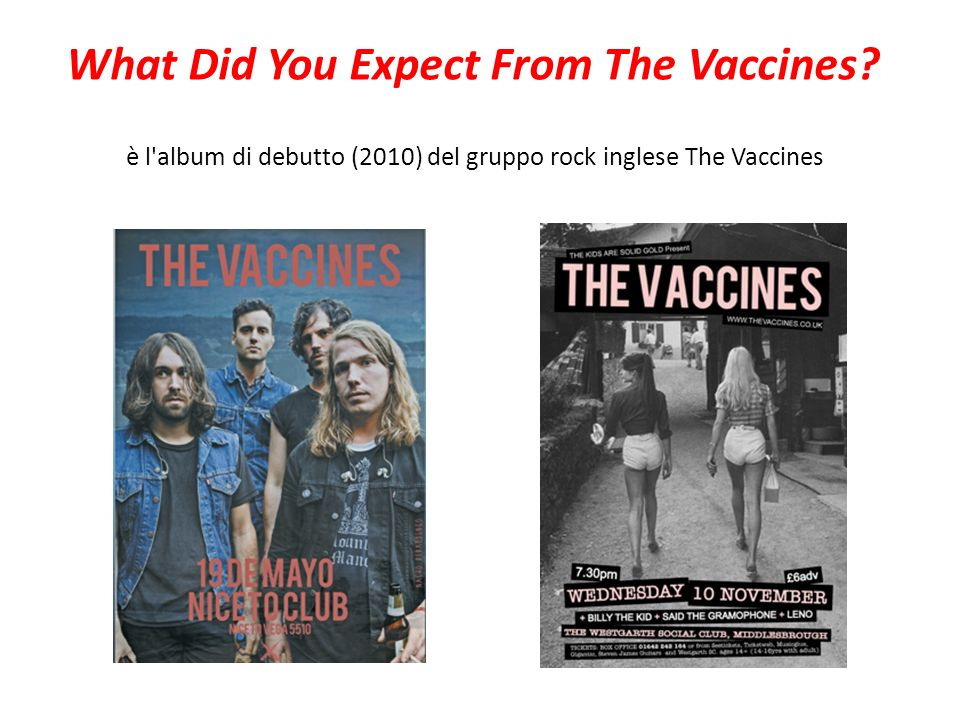 è l'album di debutto (2010) del gruppo rock inglese The Vaccines What Did You Expect From The Vaccines?