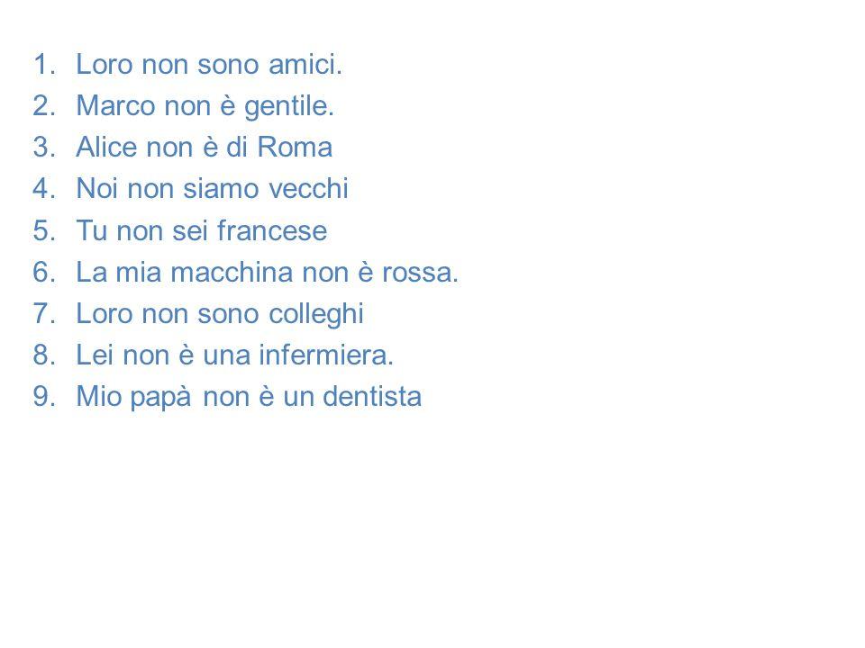 1.Loro non sono amici. 2.Marco non è gentile. 3.Alice non è di Roma 4.Noi non siamo vecchi 5.Tu non sei francese 6.La mia macchina non è rossa. 7.Loro