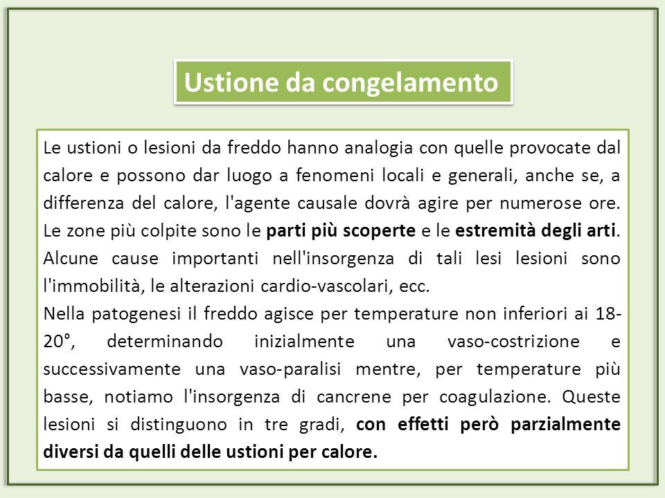 Il soggiorno presenta rischi di ustione e/o incendio per la presenza di: Camini, stufette, termosifoni spostabili, lampade da tavolo o da terra.