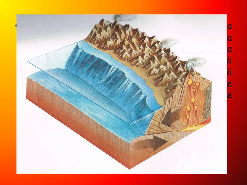 Se le zolle che si scontrano sono una continentale e una oceanica, quest ultima sprofonda sotto l altra. Per subduzione, si ha la formazione di fosse