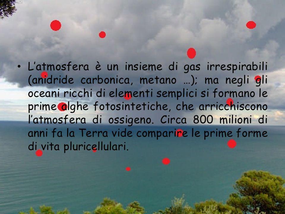Latmosfera è un insieme di gas irrespirabili (anidride carbonica, metano …); ma negli gli oceani ricchi di elementi semplici si formano le prime alghe