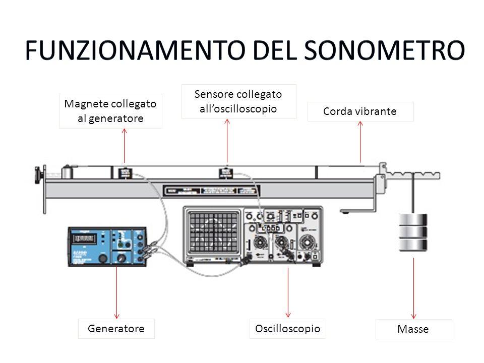 Generatore Sensore collegato alloscilloscopio Oscilloscopio Masse Magnete collegato al generatore Corda vibrante