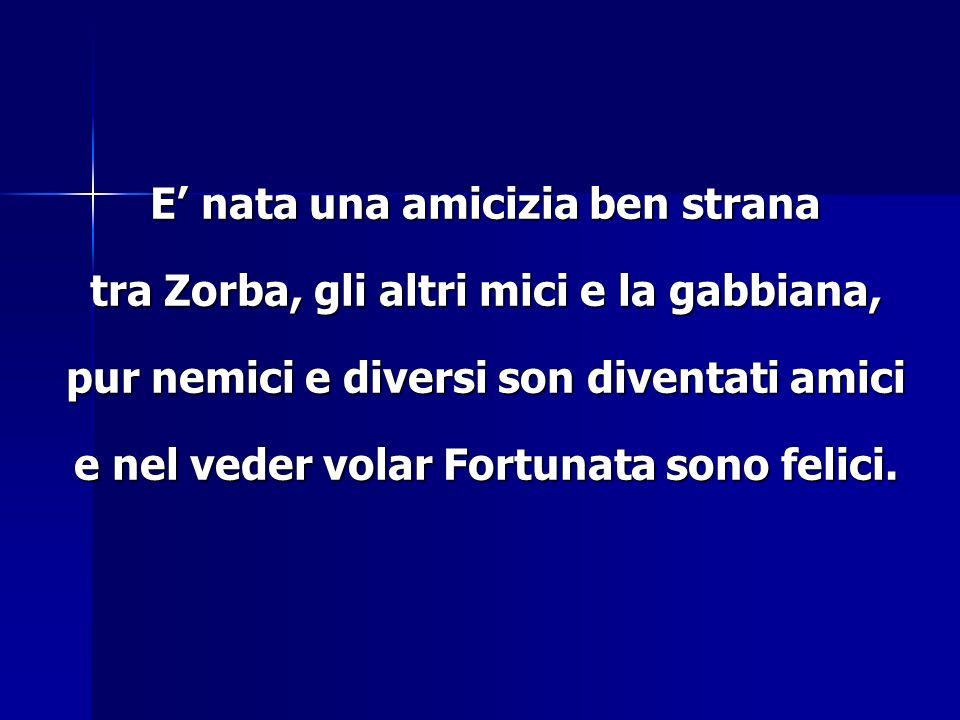 E nata una amicizia ben strana tra Zorba, gli altri mici e la gabbiana, pur nemici e diversi son diventati amici e nel veder volar Fortunata sono feli
