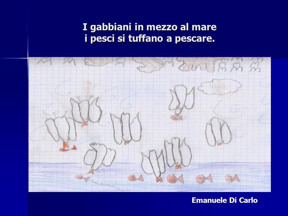 I gabbiani in mezzo al mare i pesci si tuffano a pescare. Emanuele Di Carlo