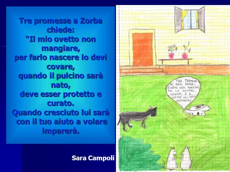 Tre promesse a Zorba chiede: Il mio ovetto non mangiare, per farlo nascere lo devi covare, quando il pulcino sarà nato, deve esser protetto e curato.