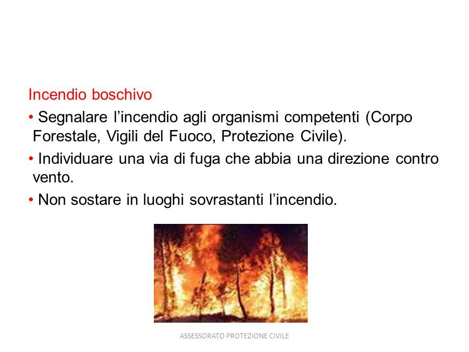 Incendio boschivo Segnalare lincendio agli organismi competenti (Corpo Forestale, Vigili del Fuoco, Protezione Civile). Individuare una via di fuga ch
