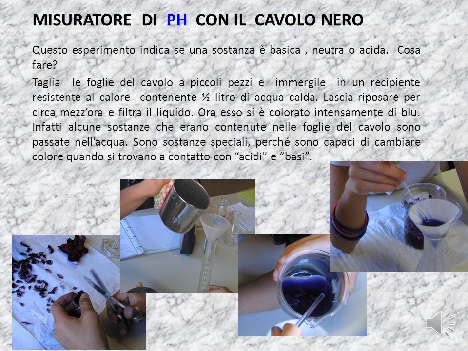 CROMATOGRAFIA SU CARTA Le Classi prime hanno partecipato con questo esperimento, esso faceva notare come il verde della clorofilla, presente nelle fog