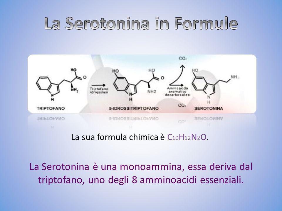 La Serotonina è una monoammina, essa deriva dal triptofano, uno degli 8 amminoacidi essenziali. La sua formula chimica è C 10 H 12 N 2 O.