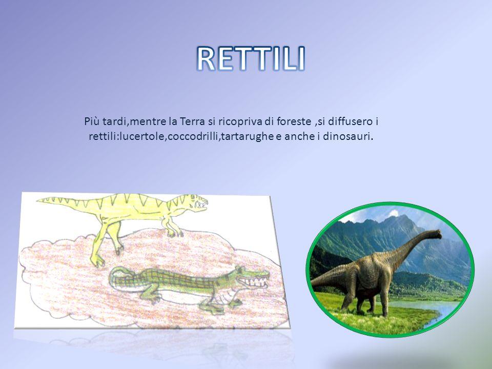 Più tardi,mentre la Terra si ricopriva di foreste,si diffusero i rettili:lucertole,coccodrilli,tartarughe e anche i dinosauri.