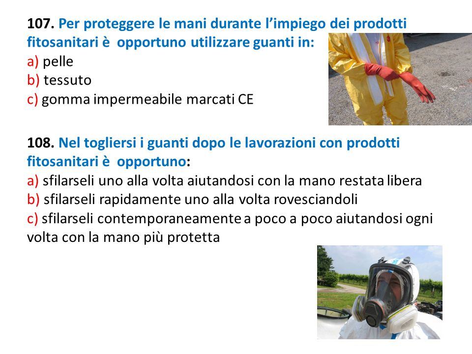 107. Per proteggere le mani durante limpiego dei prodotti fitosanitari è opportuno utilizzare guanti in: a) pelle b) tessuto c) gomma impermeabile mar